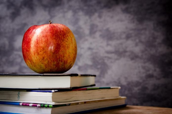 Why any startup needs a teacher