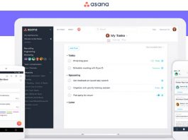 Ease up your Project Management with Asana